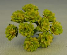 MOSS GREEN CREAM ASTER Daisy (1.3 cm) Mulberry Paper Flowers